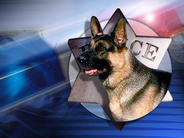 Supreme Court Curbs Drug-Sniffing Dogs During Traffic Stops