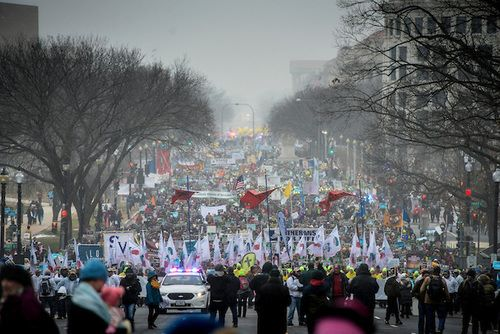 Networks Cover Panda Cub's Debut 26x More than March for Life