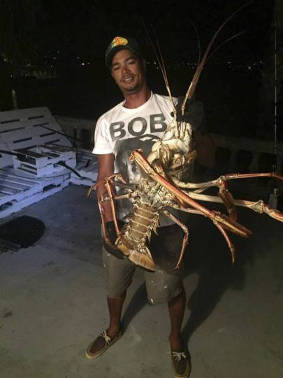Tristan Loescher holds a 14-pound spiny lobster he caught while fishing on Oct. 14 in Bermuda. (Photo: AP)