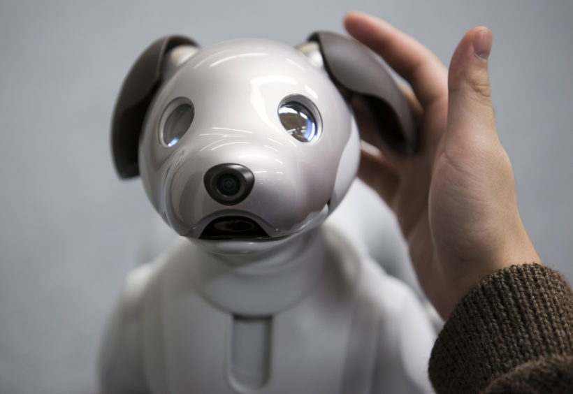 Sony's facial recognition robot dog banned in Illinois