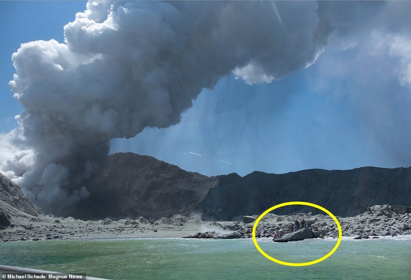 World #1 – 'No signs of life' on New Zealand volcano island after eruption