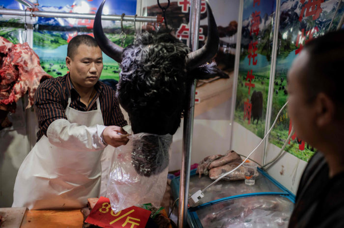 World #3 – Virus Sparks Soul-Searching Over China's Wild Animal Trade
