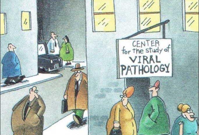 Center for Viral Pathology